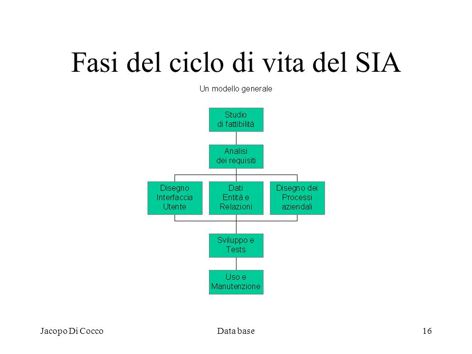 Jacopo Di CoccoData base16 Fasi del ciclo di vita del SIA