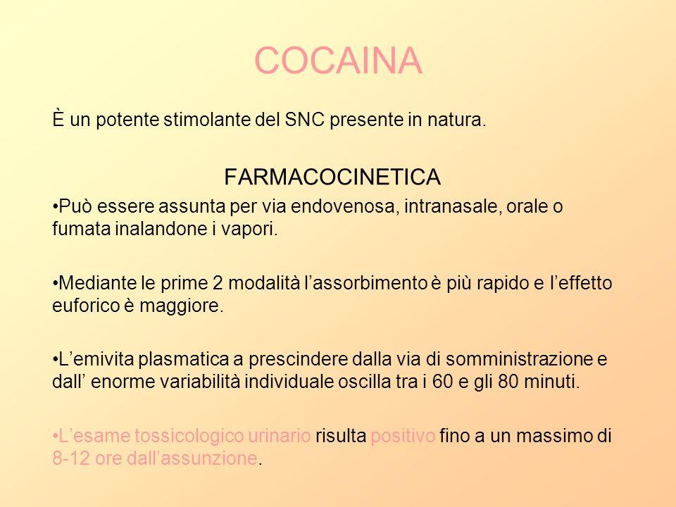 COCAINA È un potente stimolante del SNC presente in natura. FARMACOCINETICA Può essere assunta per via endovenosa, intranasale, orale o fumata inaland