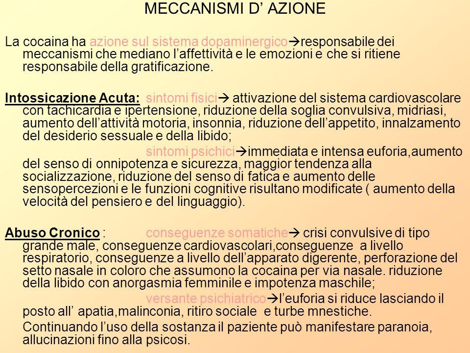 MECCANISMI D AZIONE La cocaina ha azione sul sistema dopaminergico responsabile dei meccanismi che mediano laffettività e le emozioni e che si ritiene