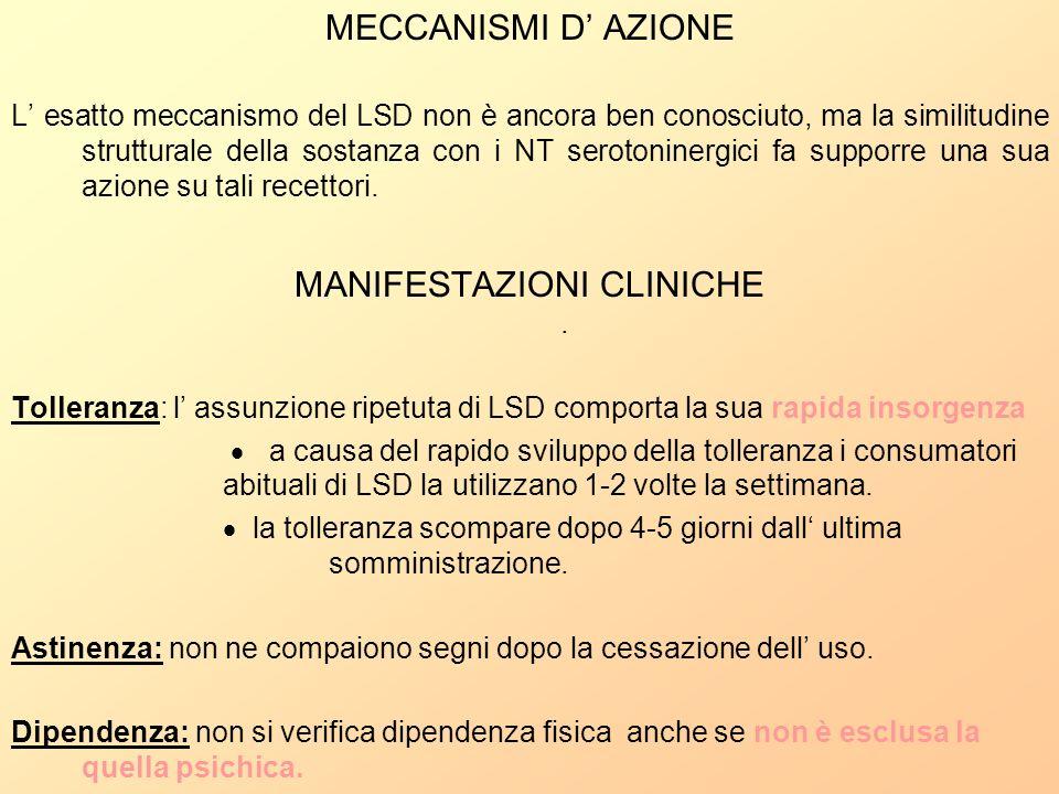 MECCANISMI D AZIONE L esatto meccanismo del LSD non è ancora ben conosciuto, ma la similitudine strutturale della sostanza con i NT serotoninergici fa