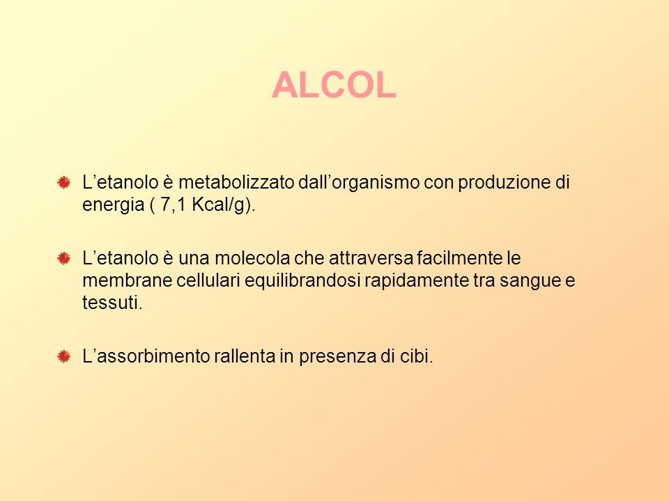 ALCOL Letanolo è metabolizzato dallorganismo con produzione di energia ( 7,1 Kcal/g). Letanolo è una molecola che attraversa facilmente le membrane ce