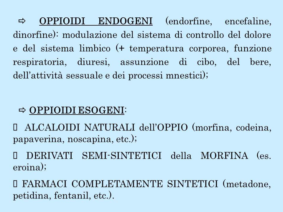 AGONISTI PURI (attivazione dei recettori): morfina, codeina, eroina, petidina, metadone (molto usato nella terapia di mantenimento), ossimorfone, idromorfone, propossifene (simile al metadone, orale), fentanil (chirurgia), sufentanil, alfentanil, LAAM (levo-alfa-acetil-metadolo: orale, mantenimento per lunga durata); ANTAGONISTI PURI (inibizione dei recettori: neutralizzano gli effetti degli agonisti e ne occupano i recettori): naloxone (non analgesico, rapido per le overdose; breve durata e via parenterale), naltrexone (orale, lungo ma assunzione quotidiana per mantenimento); AGONISTI-ANTAGONISTI ad AZIONE MISTA a seconda delle dosi e degli specifici recettori (limitata analgesia, limitato abuso): nalbufina, butorfanolo, pentazocina, buprenorfina, dezocina.