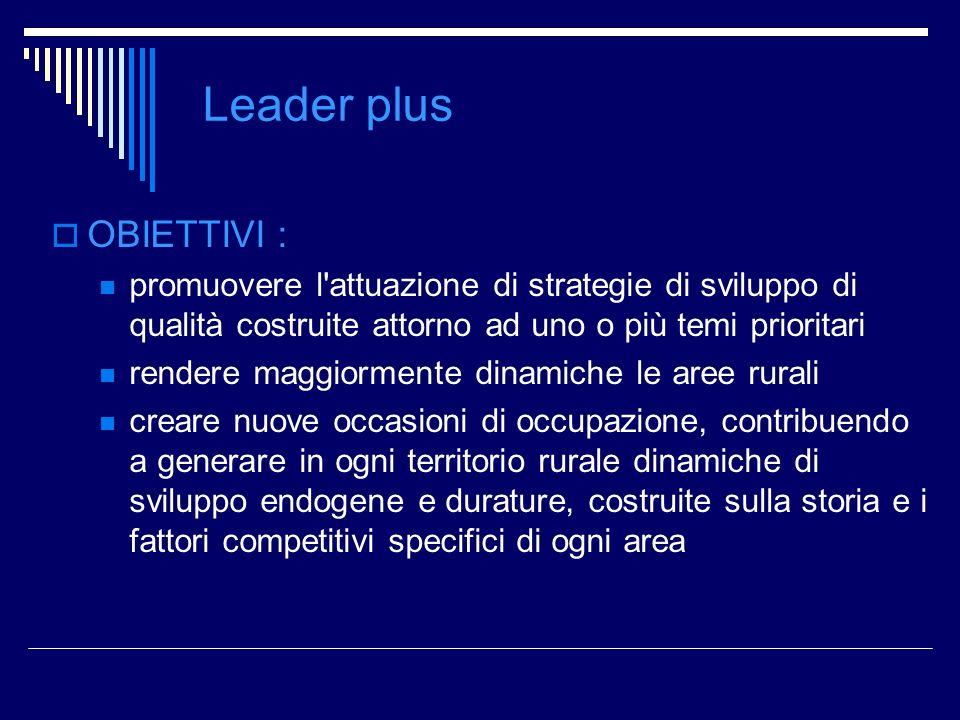 Leader plus OBIETTIVI : promuovere l'attuazione di strategie di sviluppo di qualità costruite attorno ad uno o più temi prioritari rendere maggiorment