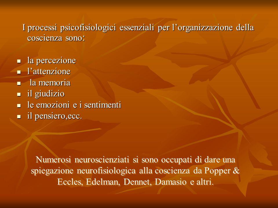 I processi psicofisiologici essenziali per lorganizzazione della coscienza sono : I processi psicofisiologici essenziali per lorganizzazione della cos