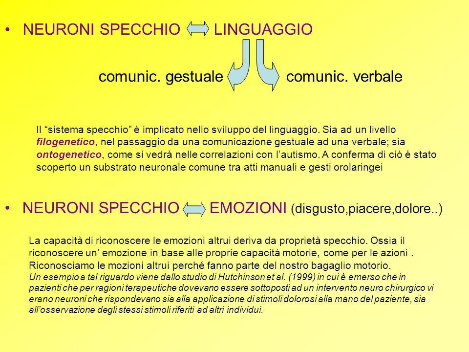 NEURONI SPECCHIO EMOZIONI (disgusto,piacere,dolore..) NEURONI SPECCHIO LINGUAGGIO comunic. gestuale comunic. verbale La capacità di riconoscere le emo