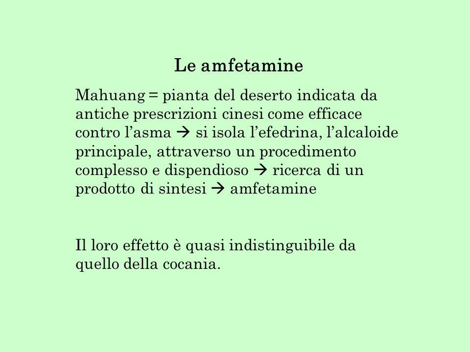 Le amfetamine Mahuang = pianta del deserto indicata da antiche prescrizioni cinesi come efficace contro lasma si isola lefedrina, lalcaloide principal