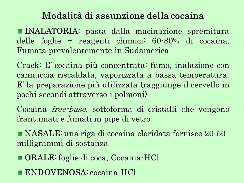 Modalità di assunzione della cocaina INALATORIA: pasta dalla macinazione spremitura delle foglie + reagenti chimici: 60-80% di cocaina. Fumata prevale