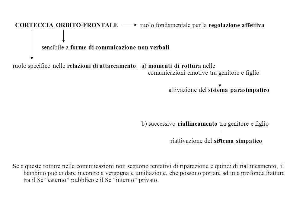 CORTECCIA ORBITO-FRONTALE ruolo fondamentale per la regolazione affettiva sensibile a forme di comunicazione non verbali ruolo specifico nelle relazio