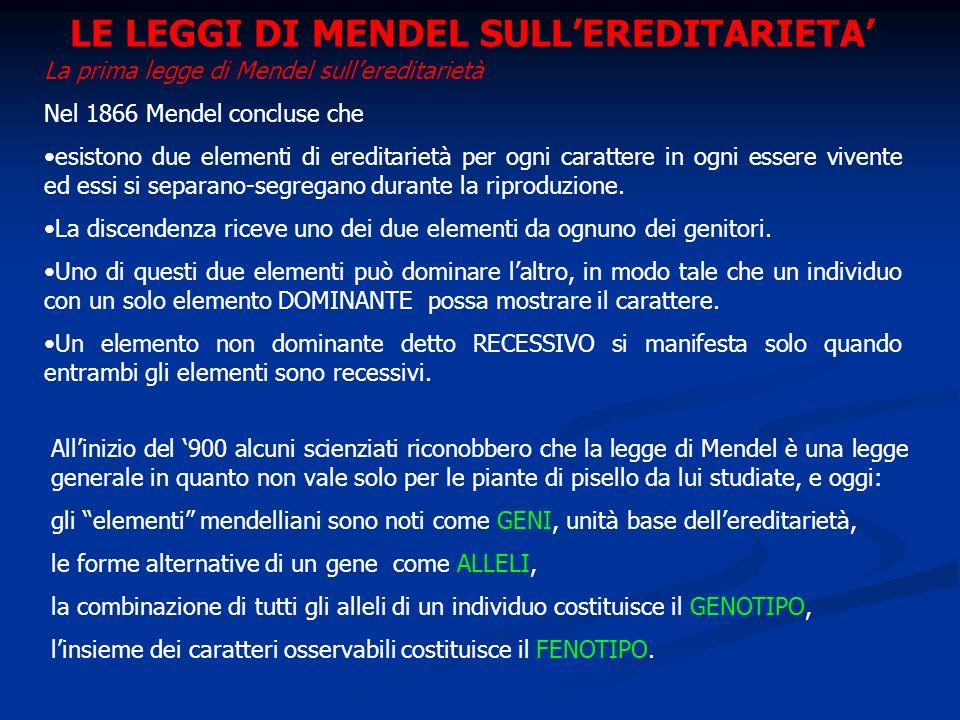 LE LEGGI DI MENDEL SULLEREDITARIETA La prima legge di Mendel sullereditarietà Nel 1866 Mendel concluse che esistono due elementi di ereditarietà per o