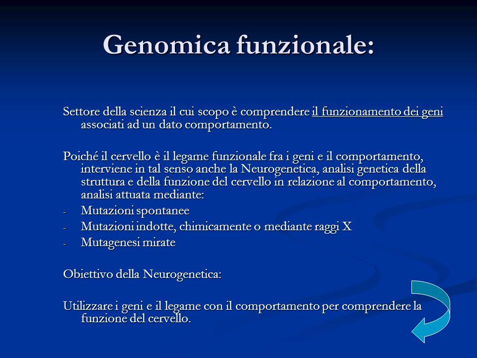 Genomica funzionale: Settore della scienza il cui scopo è comprendere il funzionamento dei geni associati ad un dato comportamento. Poiché il cervello