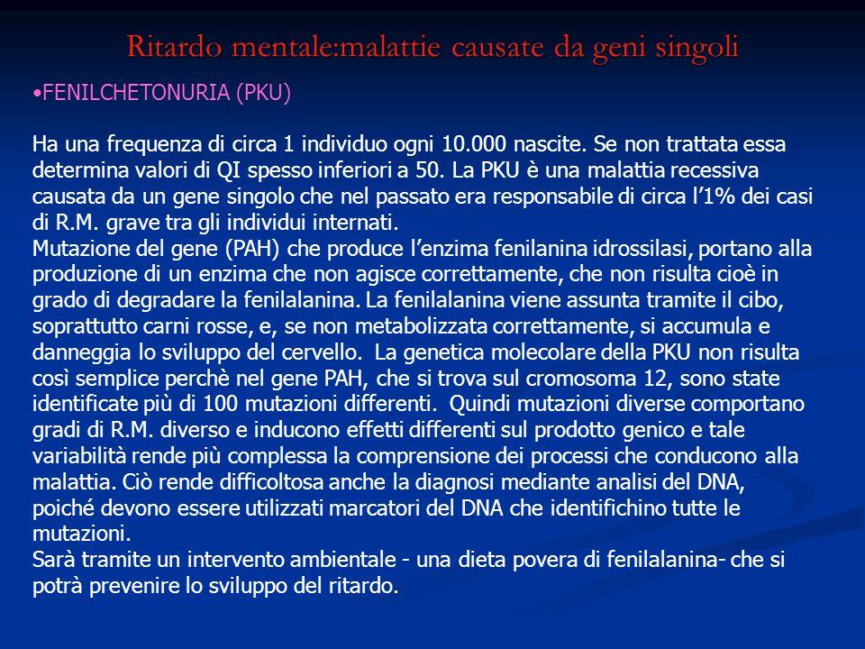 Ritardo mentale:malattie causate da geni singoli FENILCHETONURIA (PKU) Ha una frequenza di circa 1 individuo ogni 10.000 nascite. Se non trattata essa