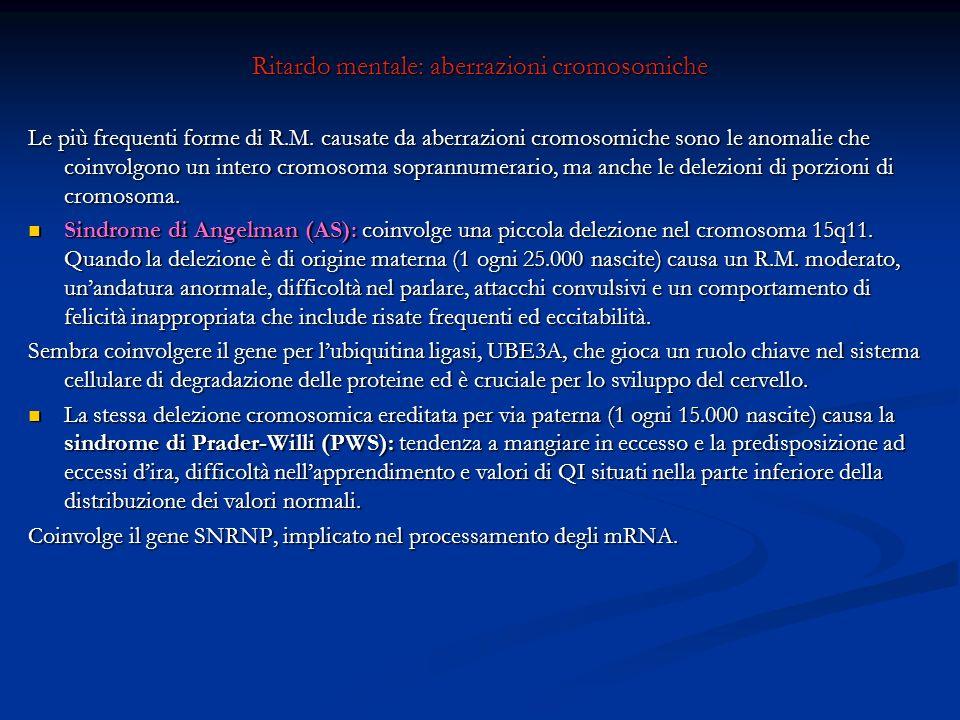 Ritardo mentale: aberrazioni cromosomiche Le più frequenti forme di R.M. causate da aberrazioni cromosomiche sono le anomalie che coinvolgono un inter