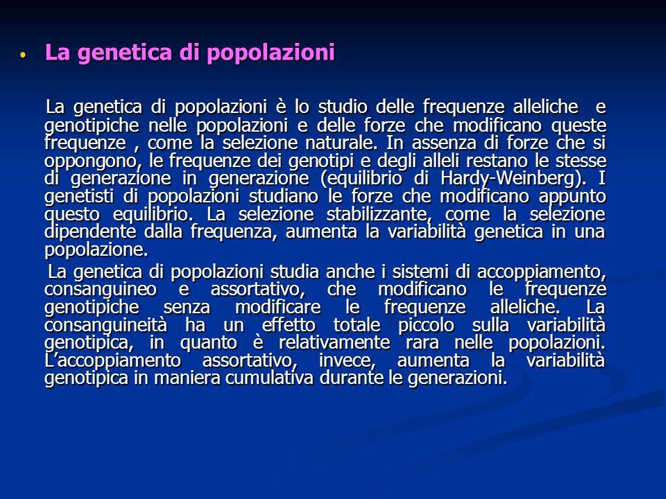 La genetica di popolazioni La genetica di popolazioni La genetica di popolazioni è lo studio delle frequenze alleliche e genotipiche nelle popolazioni