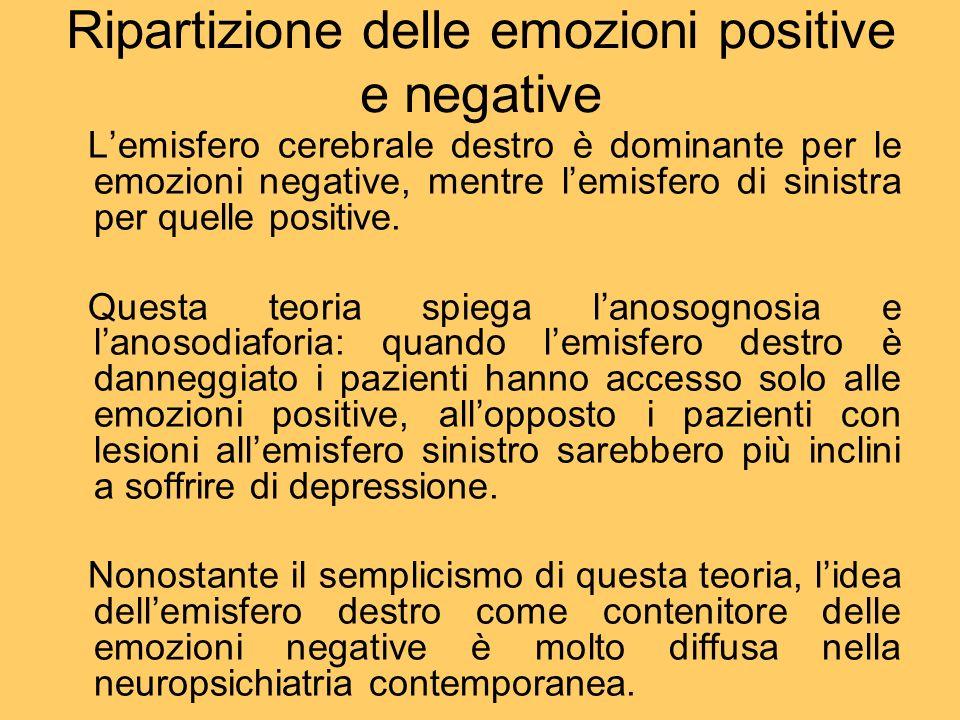 Ripartizione delle emozioni positive e negative Lemisfero cerebrale destro è dominante per le emozioni negative, mentre lemisfero di sinistra per quel