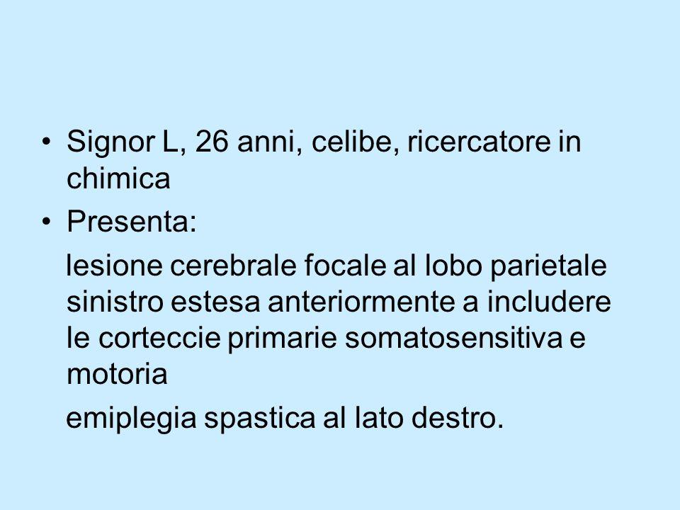 Signor L, 26 anni, celibe, ricercatore in chimica Presenta: lesione cerebrale focale al lobo parietale sinistro estesa anteriormente a includere le co