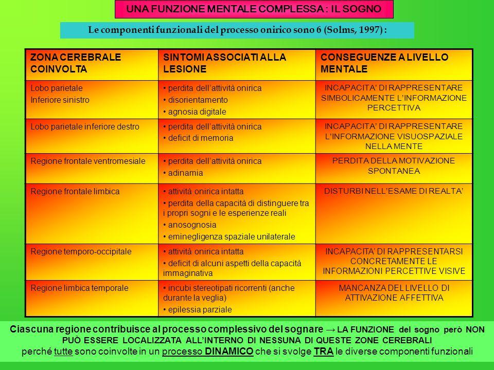 Le componenti funzionali del processo onirico sono 6 (Solms, 1997) : ZONA CEREBRALE COINVOLTA SINTOMI ASSOCIATI ALLA LESIONE CONSEGUENZE A LIVELLO MEN