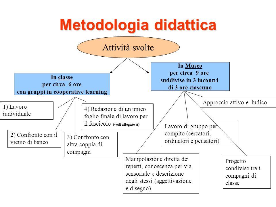 Metodologia didattica Attività svolte In classe per circa 6 ore con gruppi in cooperative learning In Museo per circa 9 ore suddivise in 3 incontri di