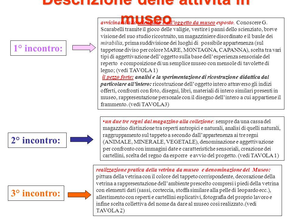 Descrizione delle attività in museo 1° incontro: avvicinarsi allo scienziato e alloggetto da museo esposto, Conoscere G. Scarabelli tramite il gioco d