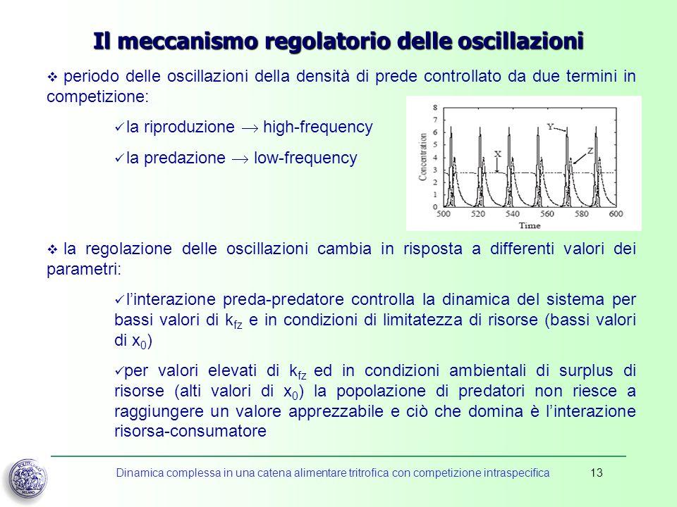 Dinamica complessa in una catena alimentare tritrofica con competizione intraspecifica13 Il meccanismo regolatorio delle oscillazioni periodo delle os
