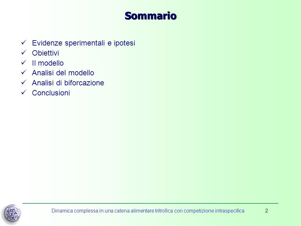 Dinamica complessa in una catena alimentare tritrofica con competizione intraspecifica2 Sommario Evidenze sperimentali e ipotesi Obiettivi Il modello