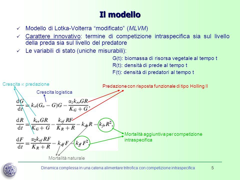 Dinamica complessa in una catena alimentare tritrofica con competizione intraspecifica5 Il modello Modello di Lotka-Volterra modificato (MLVM) Caratte