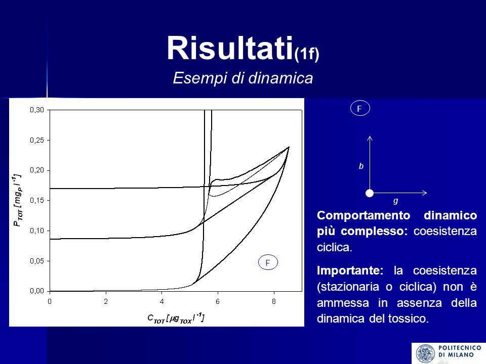 Risultati (1f) Esempi di dinamica F F g b Comportamento dinamico più complesso: coesistenza ciclica.