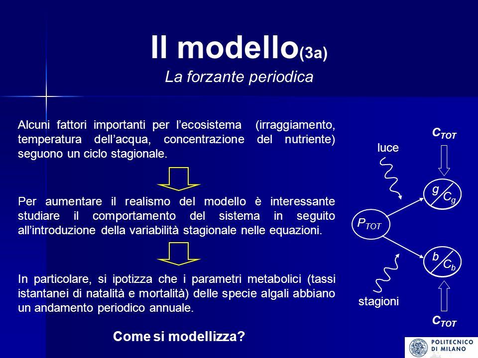 Il modello (3a) La forzante periodica Alcuni fattori importanti per lecosistema (irraggiamento, temperatura dellacqua, concentrazione del nutriente) seguono un ciclo stagionale.