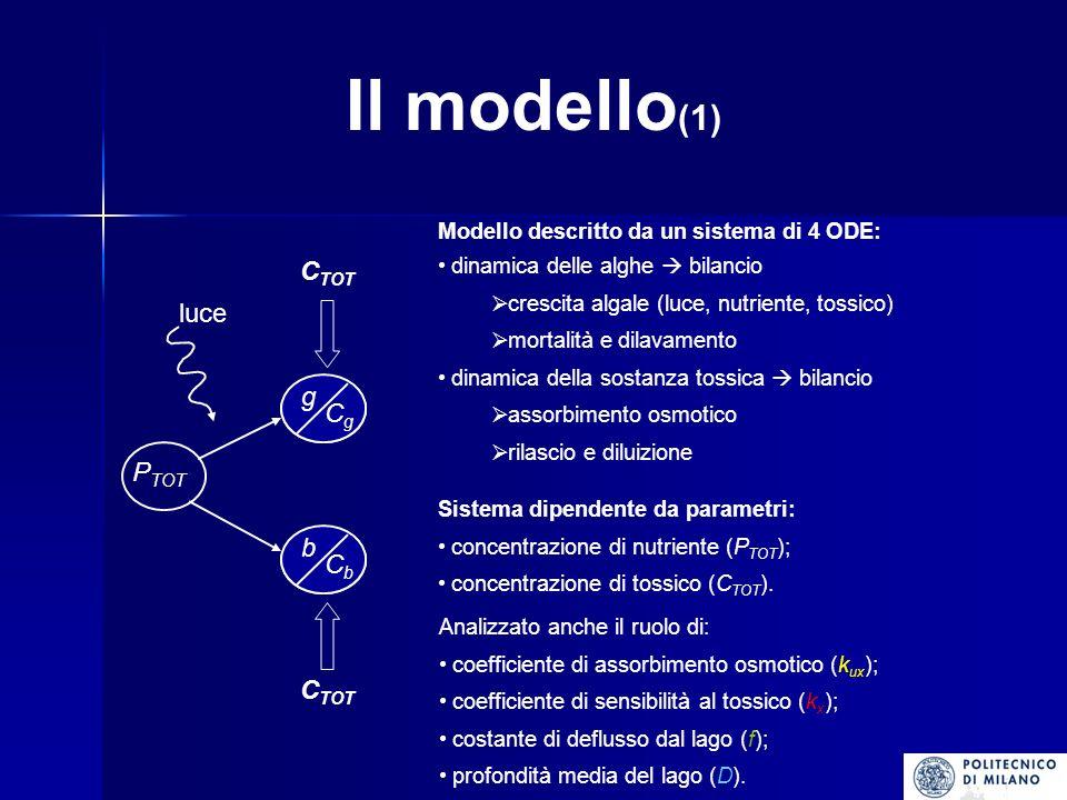 Il modello (1) P TOT g b luce C TOT dinamica delle alghe bilancio crescita algale (luce, nutriente, tossico) mortalità e dilavamento dinamica della sostanza tossica bilancio assorbimento osmotico rilascio e diluizione Sistema dipendente da parametri: concentrazione di nutriente (P TOT ); concentrazione di tossico (C TOT ).