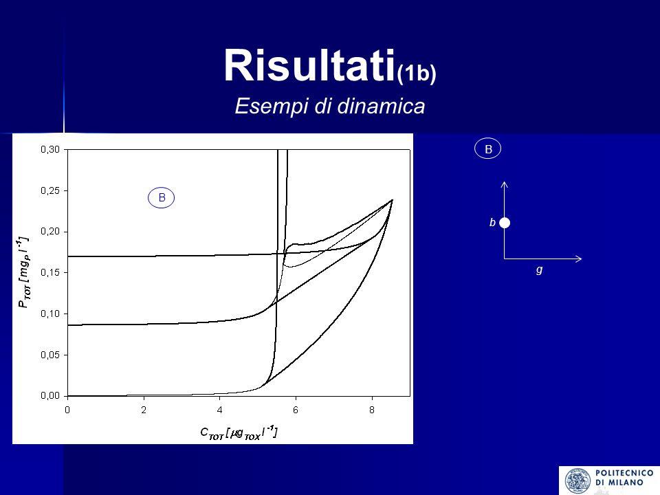 Risultati (1c) Esempi di dinamica C g b C