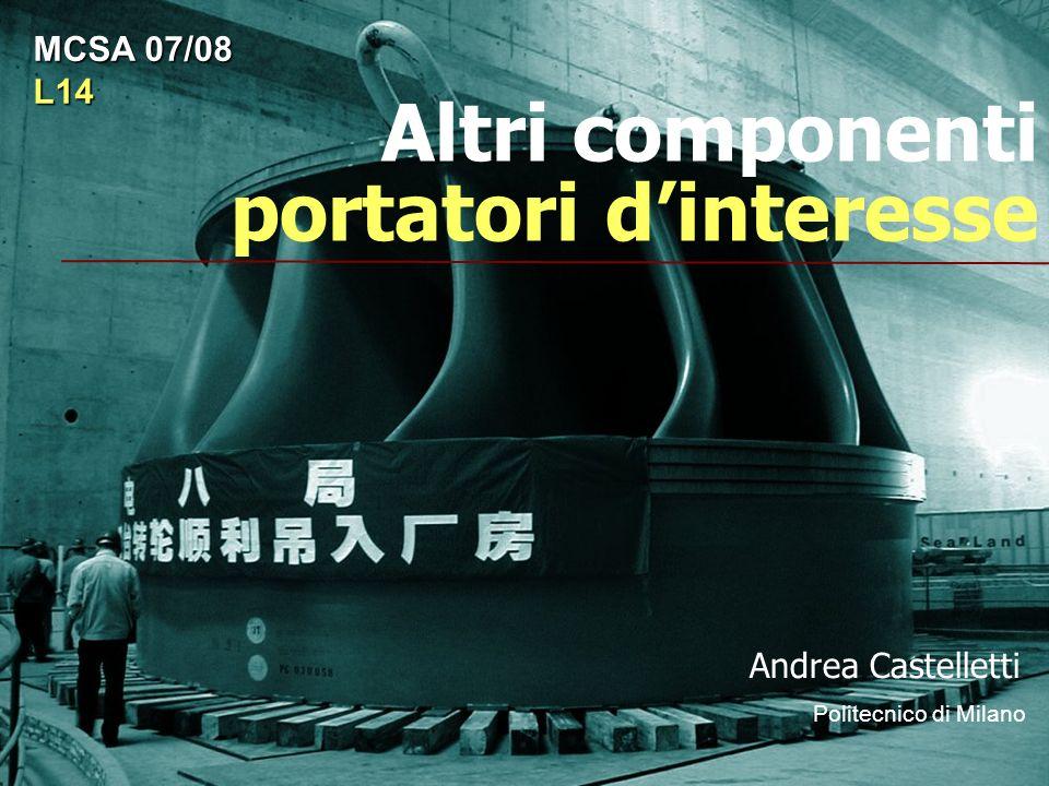 Altri componenti portatori dinteresse Andrea Castelletti Politecnico di Milano MCSA 07/08 L14