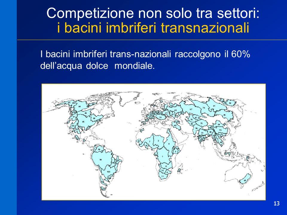 13 Competizione non solo tra settori: i bacini imbriferi transnazionali I bacini imbriferi trans-nazionali raccolgono il 60% dellacqua dolce mondiale.