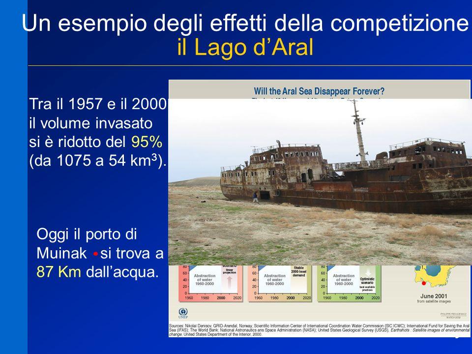 9 Un esempio degli effetti della competizione il Lago dAral Tra il 1957 e il 2000 il volume invasato si è ridotto del 95% (da 1075 a 54 km 3 ). Oggi i