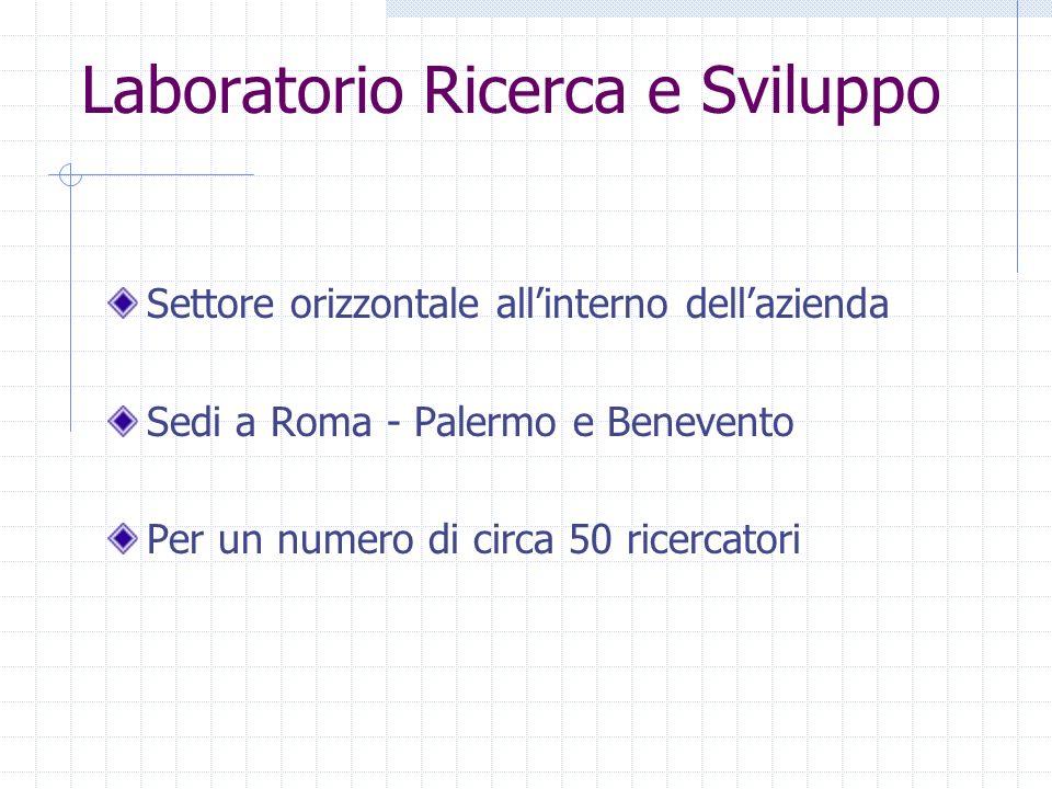 Laboratorio Ricerca e Sviluppo Settore orizzontale allinterno dellazienda Sedi a Roma - Palermo e Benevento Per un numero di circa 50 ricercatori
