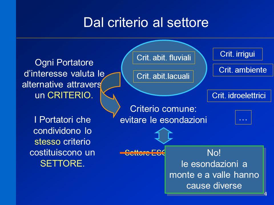 4 Dal criterio al settore Crit. abit.lacuali Crit. abit. fluviali Criterio comune: evitare le esondazioni Settore ESONDAZIONI Crit. idroelettrici Crit