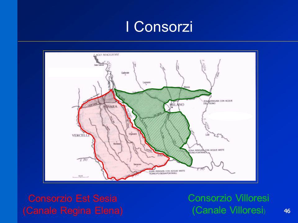 46 Consorzio Villoresi (Canale Villoresi ) Consorzio Est Sesia (Canale Regina Elena) I Consorzi