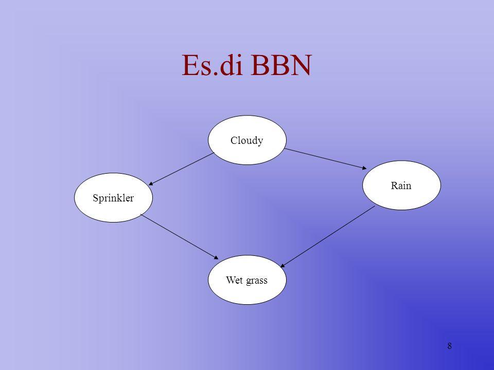 8 Es.di BBN Cloudy Sprinkler Rain Wet grass