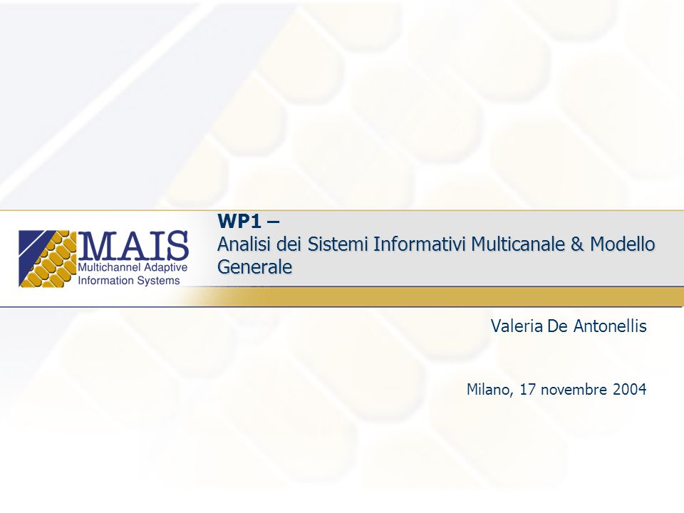 Analisi dei Sistemi Informativi Multicanale & Modello Generale WP1 – Analisi dei Sistemi Informativi Multicanale & Modello Generale Valeria De Antonellis Milano, 17 novembre 2004