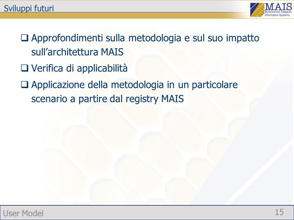 User Model 15 Sviluppi futuri Approfondimenti sulla metodologia e sul suo impatto sullarchitettura MAIS Verifica di applicabilità Applicazione della metodologia in un particolare scenario a partire dal registry MAIS