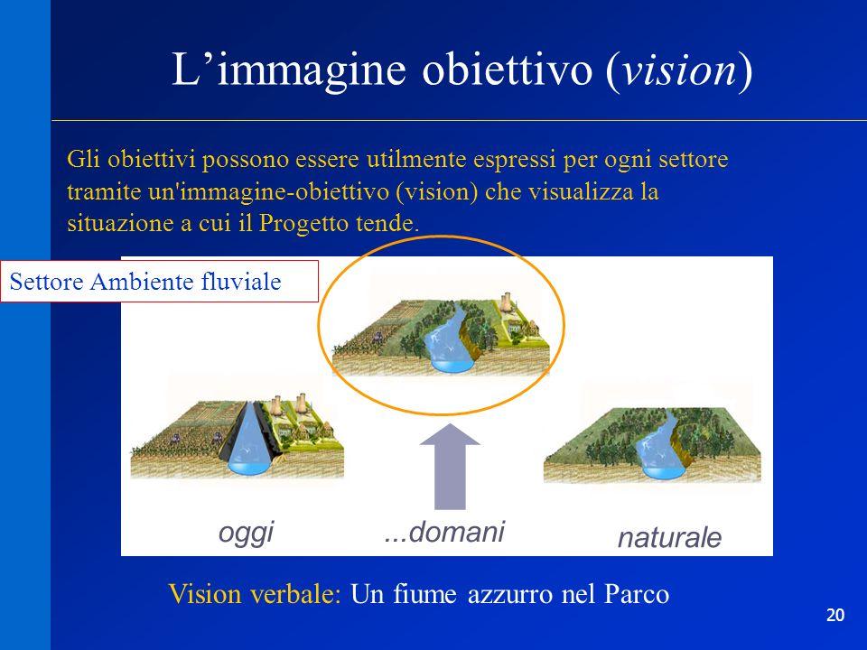 20 oggi Limmagine obiettivo (vision) naturale Gli obiettivi possono essere utilmente espressi per ogni settore tramite un'immagine-obiettivo (vision)