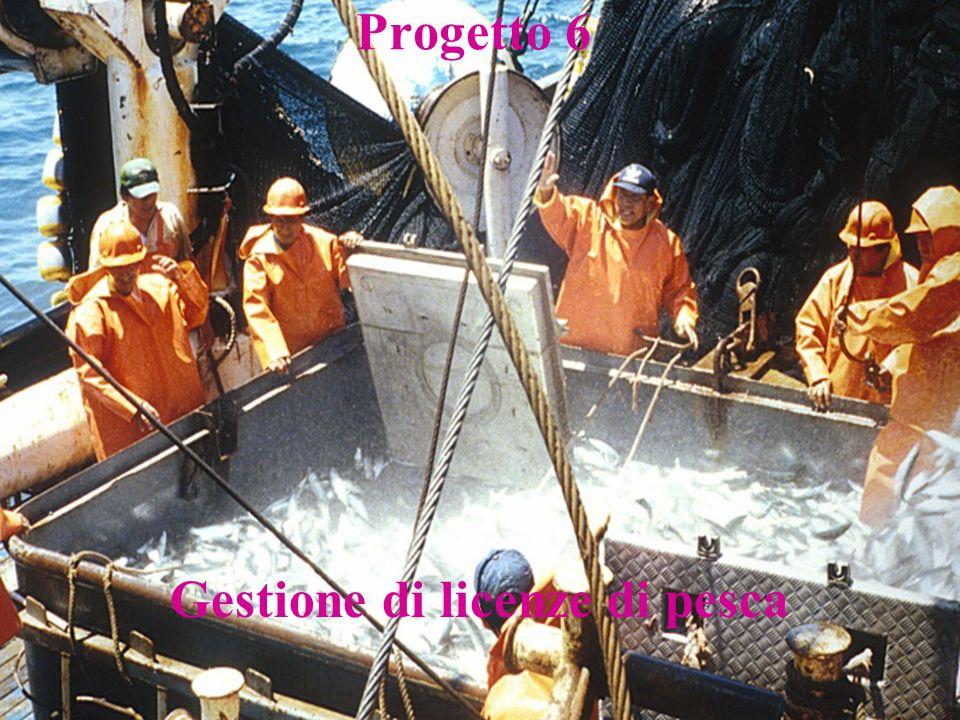 Gestione di licenze di pesca Progetto 6