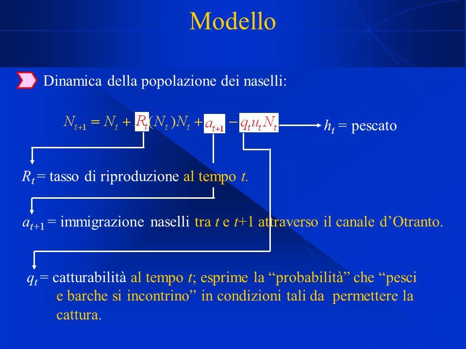 Modello Dinamica della popolazione dei naselli: R t = tasso di riproduzione al tempo t.