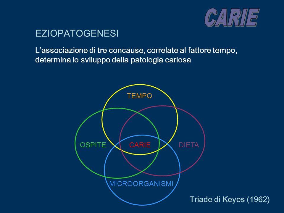 EZIOPATOGENESI Lassociazione di tre concause, correlate al fattore tempo, determina lo sviluppo della patologia cariosa TEMPO CARIE OSPITE MICROORGANI
