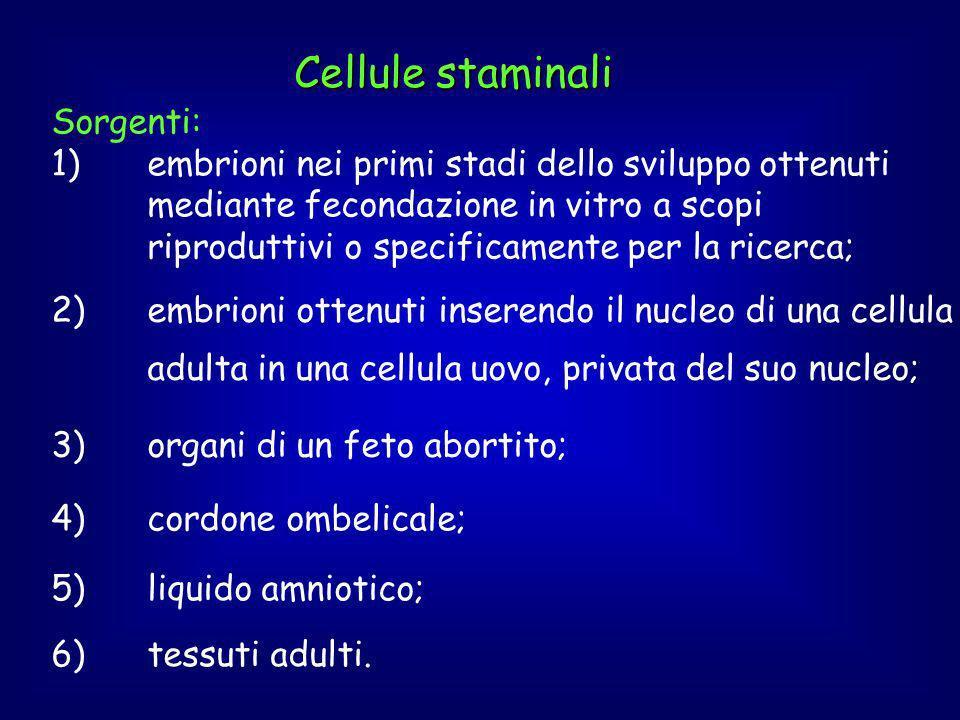 Cellule staminali 2)embrioni ottenuti inserendo il nucleo di una cellula adulta in una cellula uovo, privata del suo nucleo; 3)organi di un feto abortito; 4)cordone ombelicale; 6)tessuti adulti.