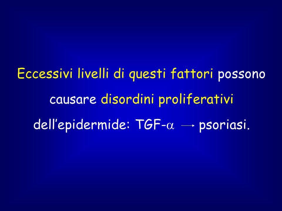 Eccessivi livelli di questi fattori possono causare disordini proliferativi dellepidermide: TGF- psoriasi.