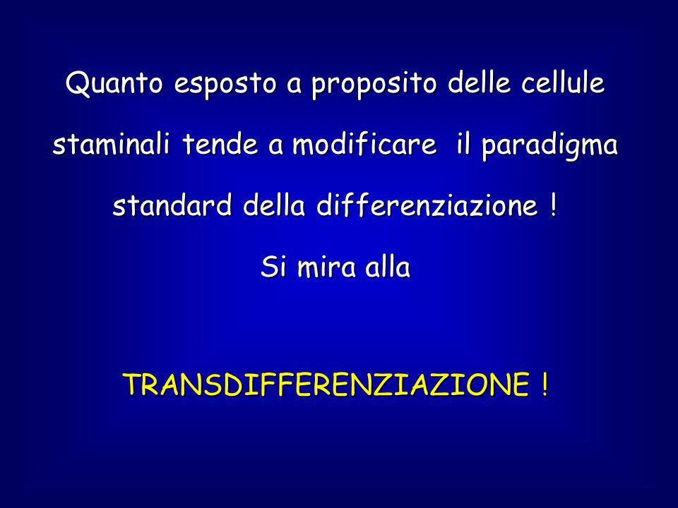 Quanto esposto a proposito delle cellule staminali tende a modificare il paradigma standard della differenziazione .