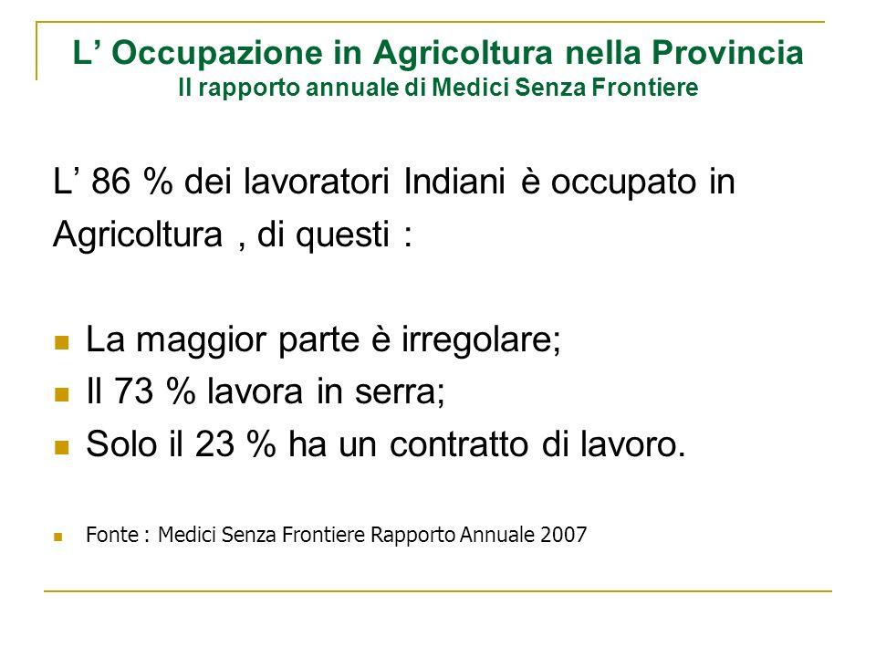 L Occupazione in Agricoltura nella Provincia Il rapporto annuale di Medici Senza Frontiere L 86 % dei lavoratori Indiani è occupato in Agricoltura, di questi : La maggior parte è irregolare; Il 73 % lavora in serra; Solo il 23 % ha un contratto di lavoro.