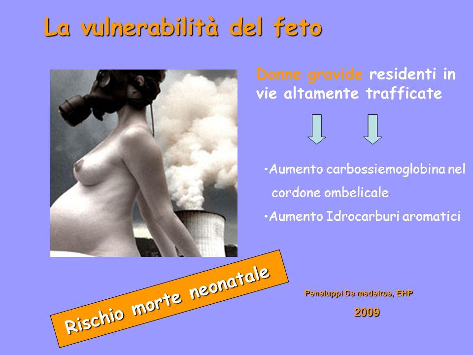 La vulnerabilità del feto Rischio morte neonatale Peneluppi De medeiros, EHP 2009 2009 Donne gravide residenti in vie altamente trafficate Aumento car