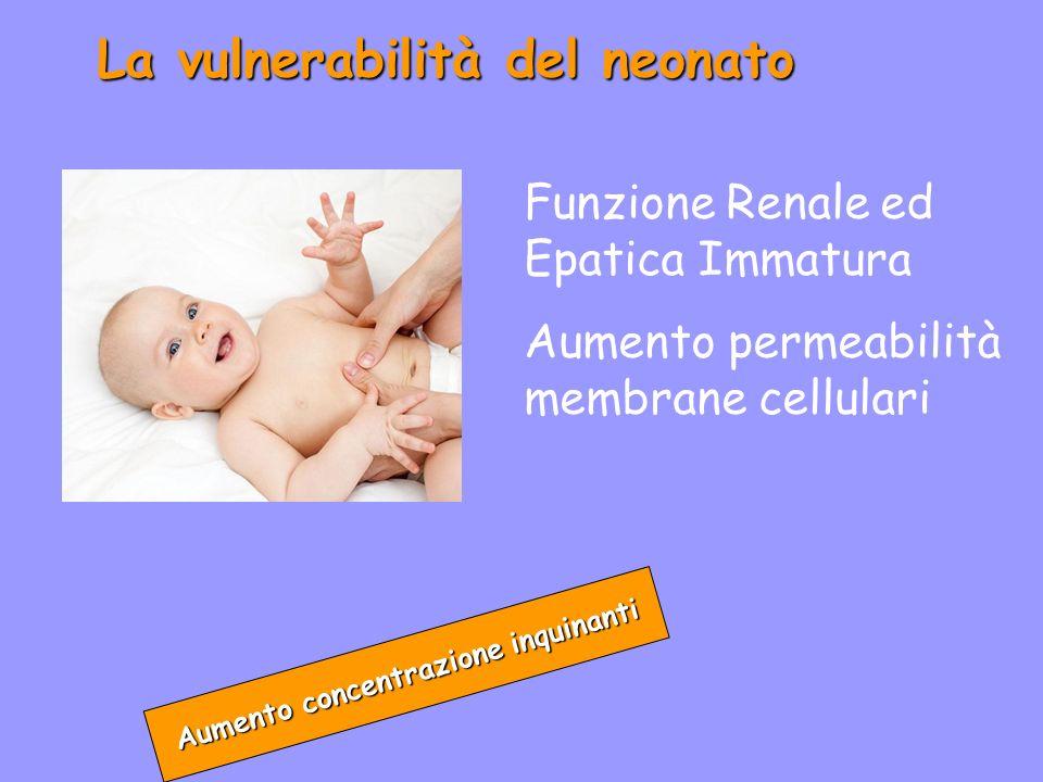 La vulnerabilità del neonato Aumento concentrazione inquinanti Funzione Renale ed Epatica Immatura Aumento permeabilità membrane cellulari