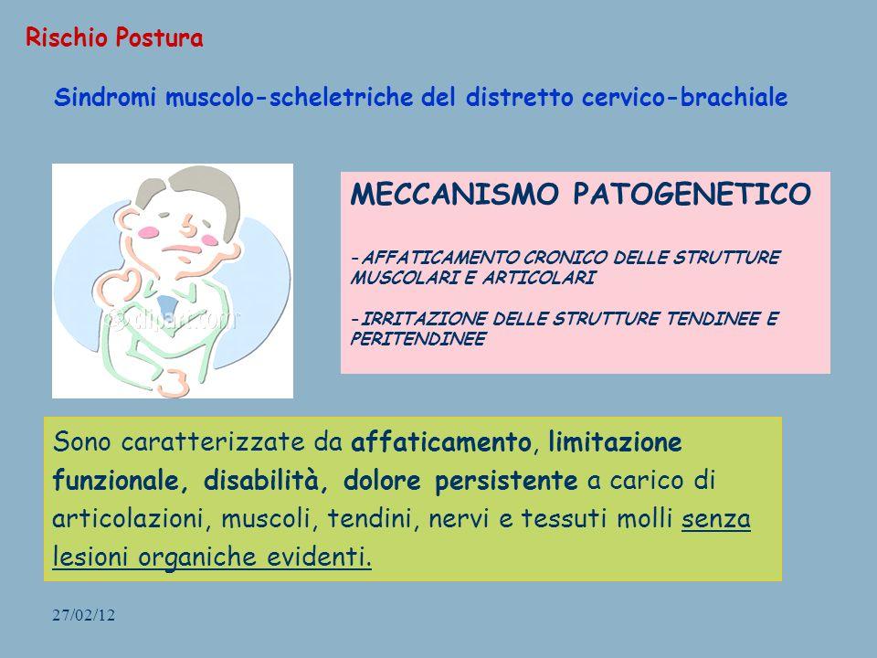 27/02/12 Sindromi muscolo-scheletriche del distretto cervico-brachiale Rischio Postura Sono caratterizzate da affaticamento, limitazione funzionale, d