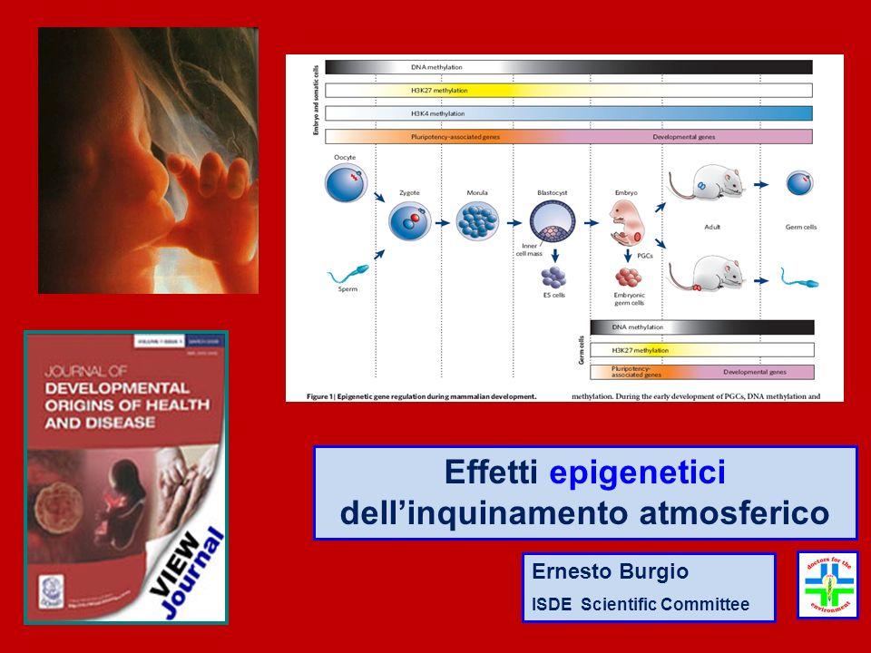 Ernesto Burgio ISDE Scientific Committee Effetti epigenetici dellinquinamento atmosferico